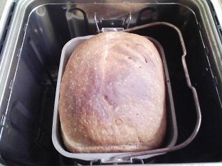 本日のお昼ご飯の写真 パン焼き器(ホームベーカリー)で自家製食パン(小麦は北海道・多寄の春よ恋い)、ビーフシチュー