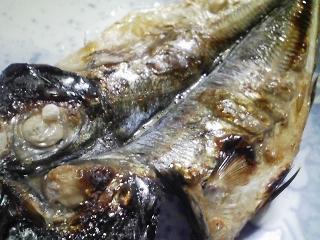 本日の朝ご飯のおかずの写真 島根産アジの開き、三重産シジミの味噌汁など