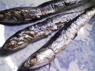 本日の朝ご飯のおかずの写真 神奈川の三浦産カタクチイワシの塩焼き、青森産ホタテの稚貝の味噌汁など
