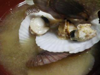 本日の晩ご飯のおかずの写真 高知産真イワシの刺身、青森産ホタテの稚貝の味噌汁など