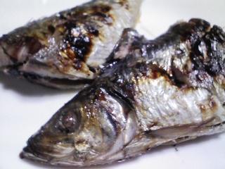 本日の晩ご飯のおかずの写真 北海道産ニシンの塩焼き、白子焼き、鶏肉と野菜の煮込み(ポトフ)など