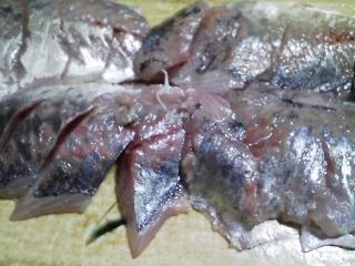 本日の晩ご飯のおかずの写真 千葉産真アジの刺身、サバのアラ出汁の野菜鍋など