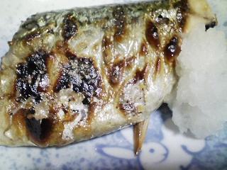 本日の晩ご飯のおかずの写真 千葉産真サバの塩焼き、鹿児島産そら豆の焼きそら豆など