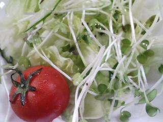 本日のお昼ご飯の写真 ポークカレー、サラダ