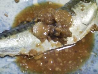 本日の晩ご飯のおかずの写真 神奈川の長井産真サバの味噌煮、メジナのアラの野菜鍋など