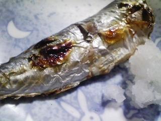 本日の朝ご飯のおかずの写真 神奈川の長井産真サバの塩焼き、大アジ出汁の味噌汁など
