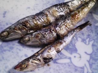 本日の朝ご飯のおかずの写真 タケノコご飯の残り、神奈川の三浦産片口イワシの塩焼きなど
