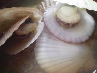 本日のお昼ご飯のおかずの写真 豚肉の塩胡椒焼き、青森産ホタテの稚貝の味噌汁など