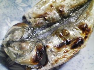 本日の朝ご飯のおかずの写真 静岡の沼津産アジの開き、煮干し出汁の味噌汁など