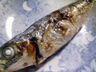 本日の朝ご飯のおかずの写真 神奈川の三浦産真アジの塩焼き、煮干し出汁の吸い物など