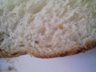 本日のお昼ご飯の写真 パン焼き器(ホームベーカリー)で自家製食パン(小麦は、北海道音更のの春の香りの青い空と岩手の南部地粉のブレンド)、黒毛和牛のもも肉のステーキ