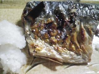 本日の晩ご飯の写真 肉ご飯、宮城産ゴマサバの塩焼きなど