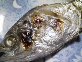 本日の晩ご飯のおかずの写真 神奈川の横須賀産エボ鯛の塩焼き、北海道産人参を使ったスープなど