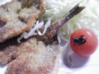 本日の晩ご飯のおかずの写真 神奈川の三崎産イサキのフライ、カマス出汁の味噌汁など