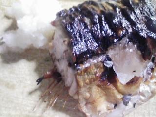 本日の晩ご飯のおかずの写真 茨城産の栗で栗ご飯、青森産真サバの塩焼き