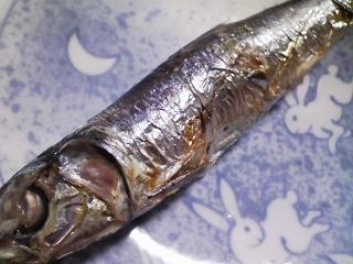 本日の朝ご飯のおかずの写真 三重産ウルメイワシの塩焼き、ウルメイワシ出汁の味噌汁など