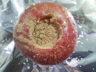 おやつ 青森産リンゴ 紅玉で焼きリンゴ
