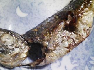 本日の朝ご飯のおかずの写真 長崎産アジの開き、石鯛出汁の味噌汁など