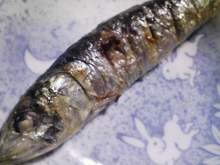 本日の朝ご飯のおかずの写真 北海道産真イワシの塩焼き、タナゴ出汁の味噌汁など