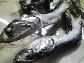 最近味噌汁の出汁に使っている煮干し(神奈川産)