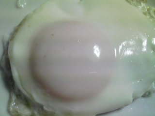 本日の朝ご飯のおかずの写真 北海道産イワシの開き、煮干し出汁の味噌汁など