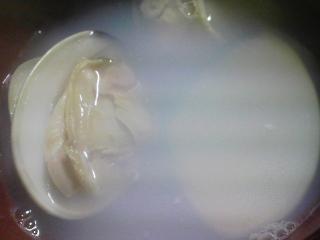 本日の晩ご飯のおかずの写真 鹿児島産本マグロの刺身、千葉産ハマグリの浜つゆなど